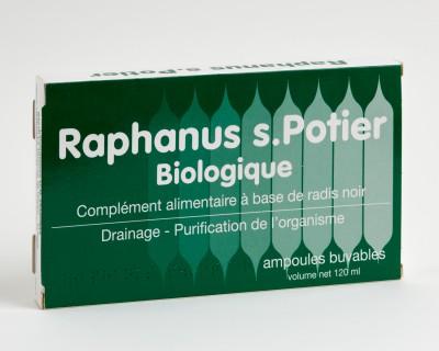 raphanus-s-potier-bio